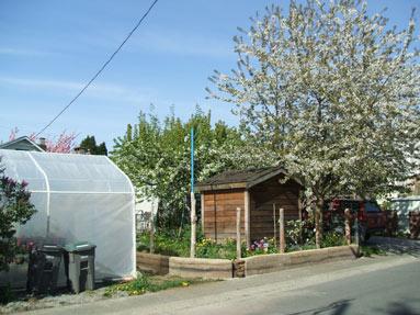 vancouver-garden-wall
