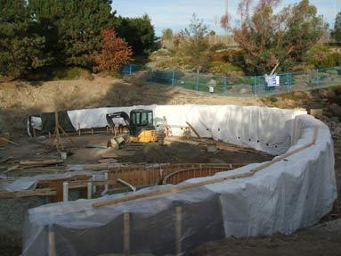 walls-tarped